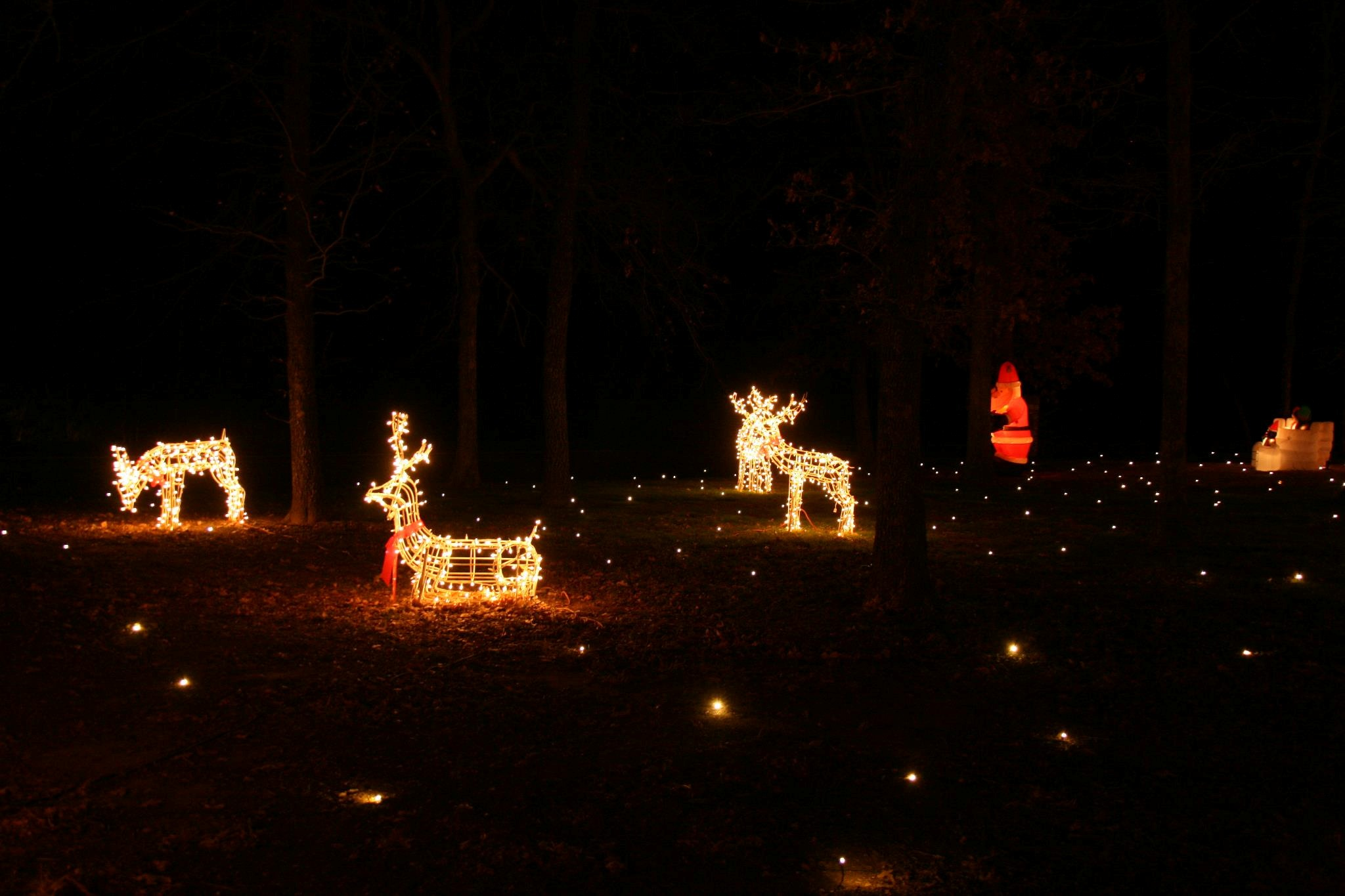 Lawn lights 100 images ideas solar lights for walkway for Best lawn lights