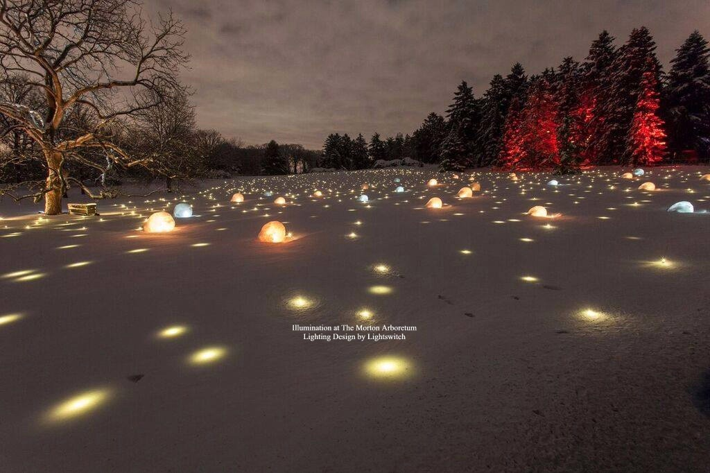 Illumination-at-The-Morton-Arboretum-Titled